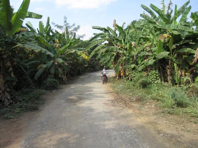 On the way out of Battambang.
